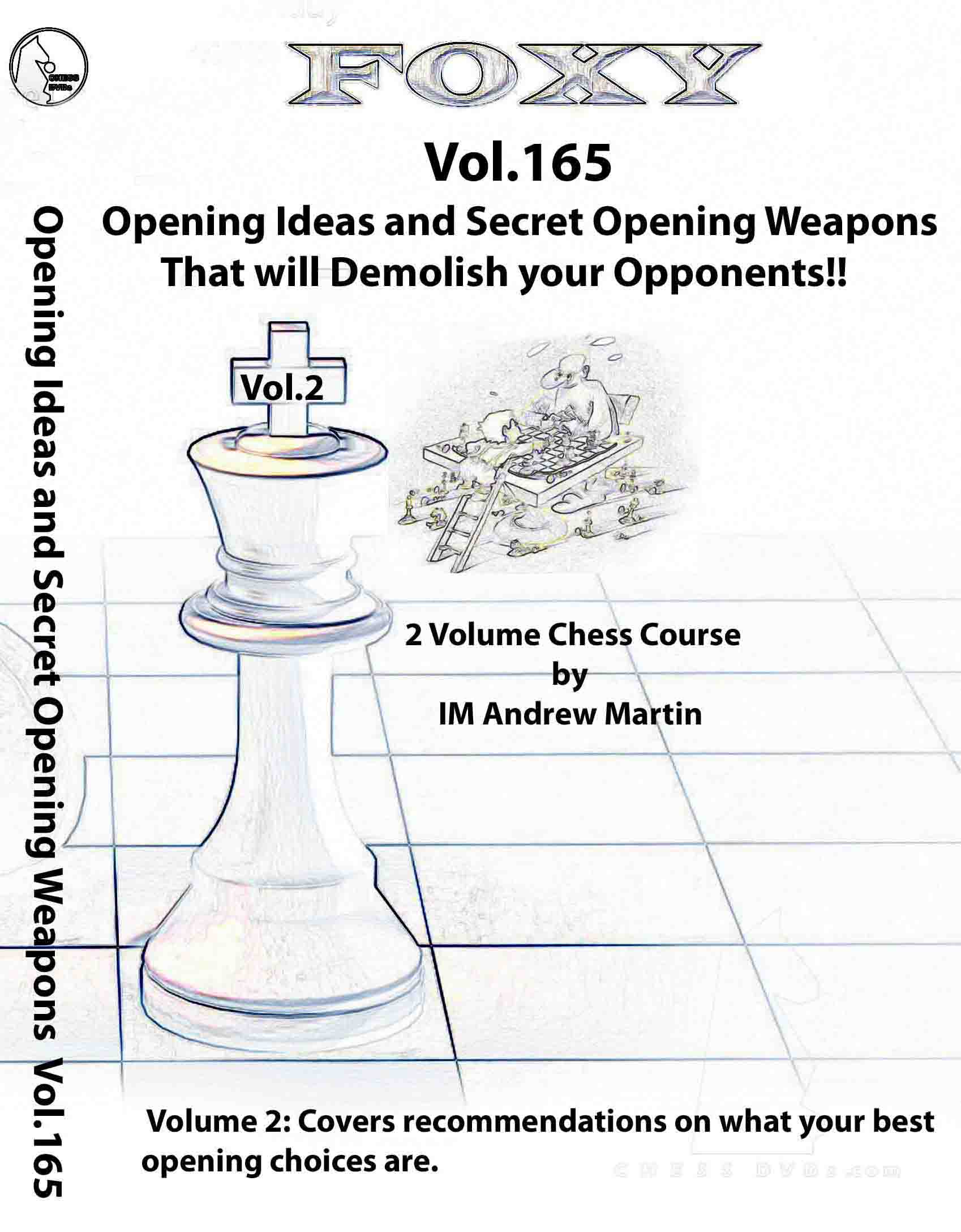 Volume 0165: Ideas and Techniques and improving players vol.2
